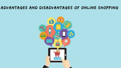 Photo of Advantages and Disadvantages of the Online Wholesaler