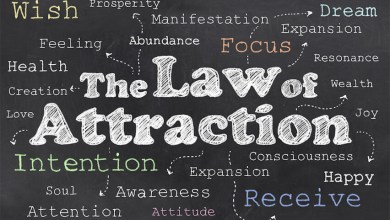 Photo of Business Ideas Explains Law of Attraction