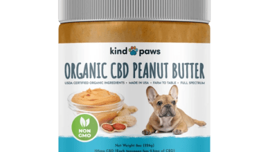 Photo of Finding the Best CBD For Pets