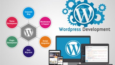 Photo of WordPress Support Services
