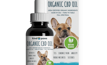 Photo of CBD For Pets – Benefits Of Using CBD Oil For Pets