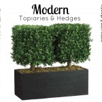Modern Topiaries Hedges