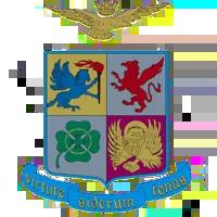 Aeronautica Militare - Logo