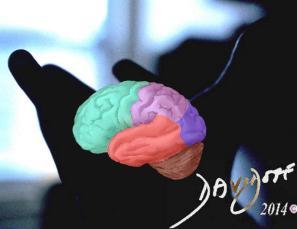 hand-brain-art-anatomy-Davidoff
