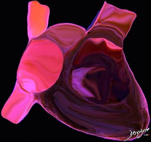 heart0004-catalogue-signed-500-72dpi