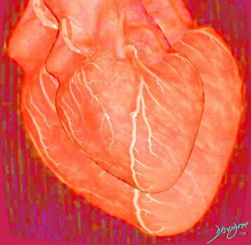 heart0008-catalogue-signed-500-72dpi