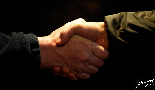 hands, handshake, trust, bond