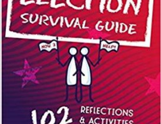 The 2020 Election Survival Guide by Ann American – Book Review