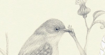 Winter Drawings :)