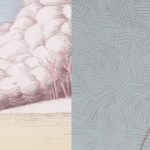 Nick Sheehy's Illustrations.