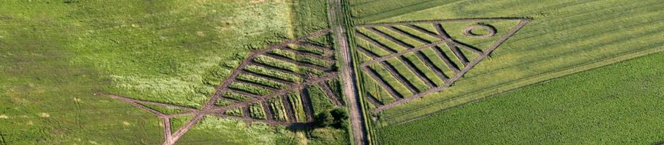 Jaroslaw Koziara's Land Art.