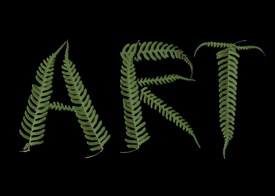 ART-Fern