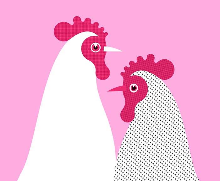 chickens1w