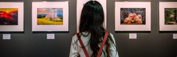 Vendere arte online: e-commerce personale o piattaforme di vendita?