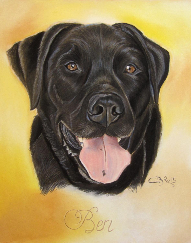 portrait labrador noir