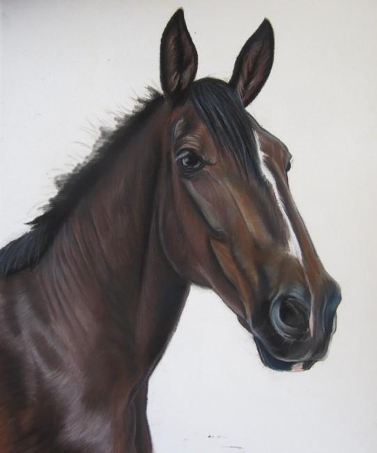 cheval pastels secs