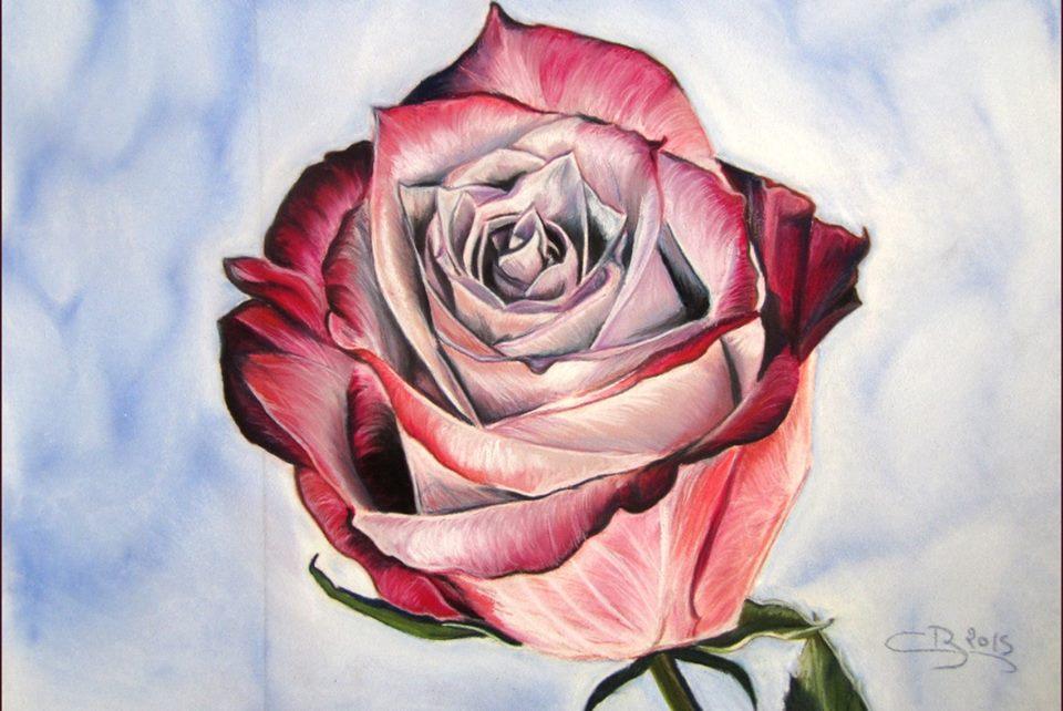 rose pastel sec