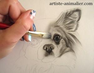 dessiner chihuahua