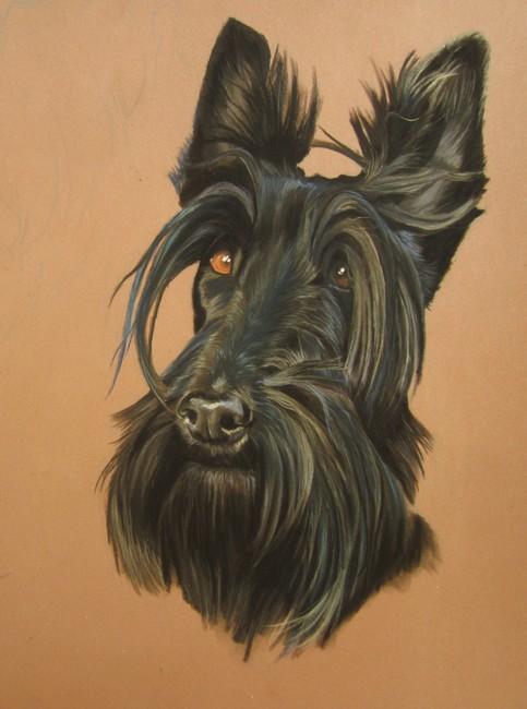 portrait scottish
