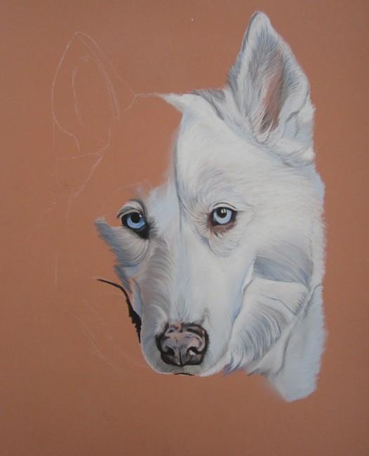 husky pastel