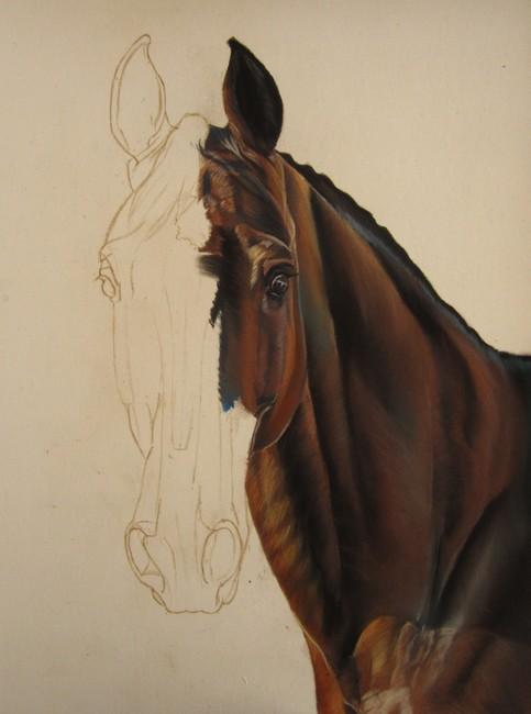 dessiner cheval