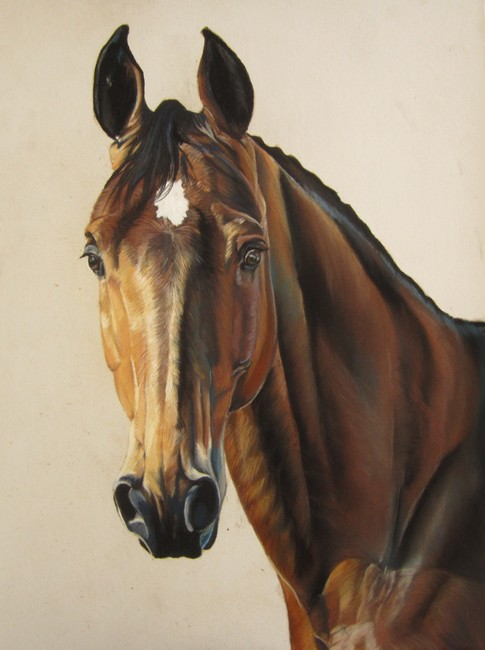 beau cheval aux pastels