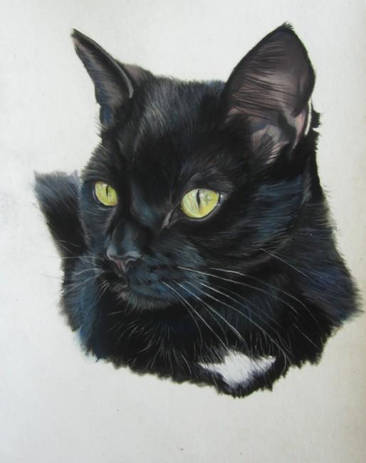 peindre chat noir