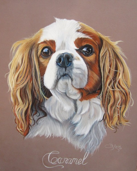 Cours Cavalier King Charles (Pastels)