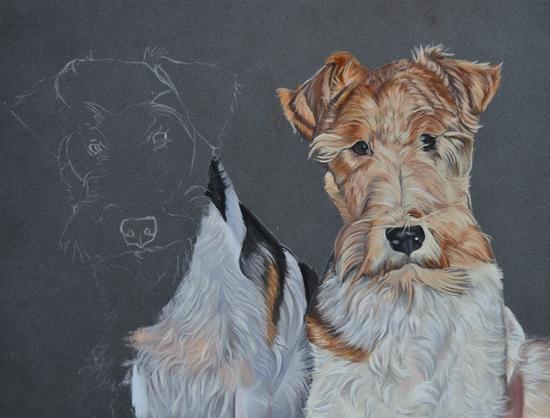 fox terrier pastel