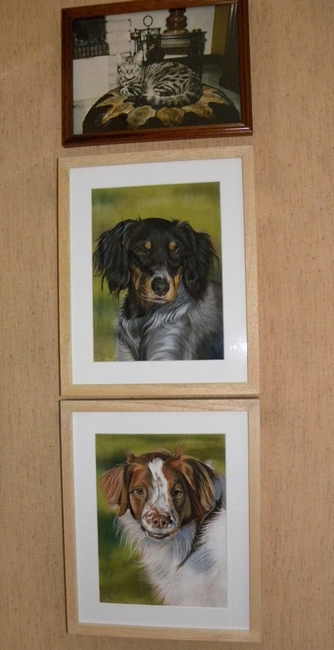 tableaux chiens