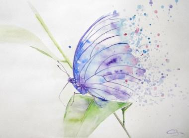 aquarelle de papillon