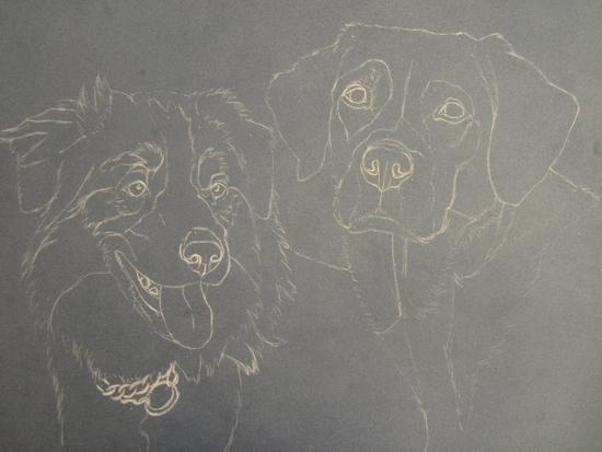 esquisse-chiens