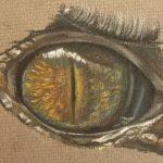 oeil-croco-5