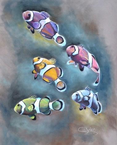 poissons clowns