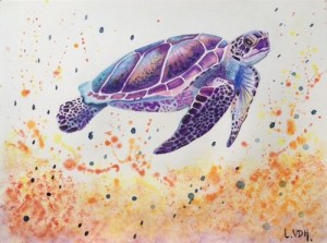 tortue-laetitia