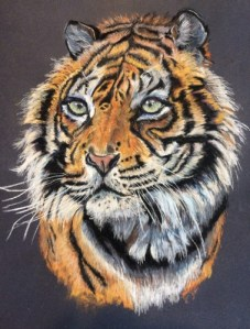 tigresse-pascale