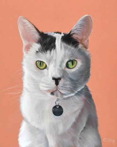 chat au pastel sec