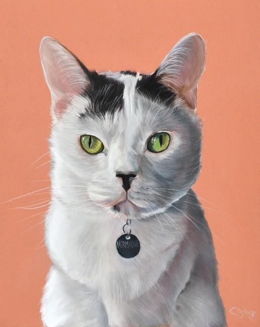 chat réaliste pastel sec