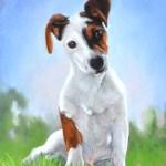 tableau chien herbe