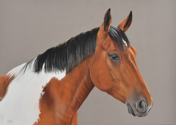 cheval pie pastel