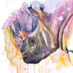 aquarelle rhinoceros
