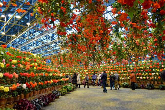 Nabana No Sato - Botanical Garden