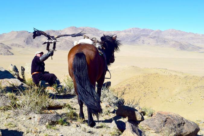 Botei and his eagle mongolia