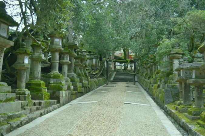 Pathway leading up to Kasuga Taisha Shrine