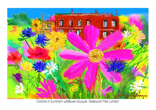 cosmos in summer A5 72