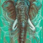 Elephant-canvas-print