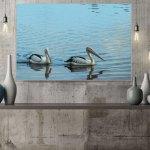 pelicans-water-canvas-wall-art-print