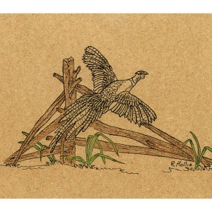 Pheasant on Broken Fence 5″x 7″