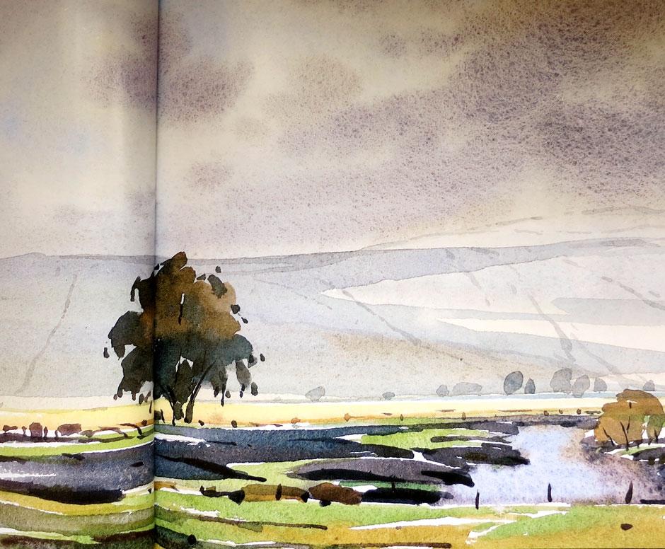 Erik van Ommen - The Eagle Tree