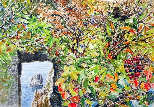Michael Warren - Window in the rock
